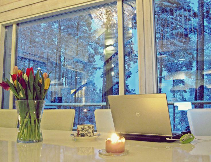 Valmennuspäivän aamun sininen hetki. Lehmonkärki, tammikuu 2014.