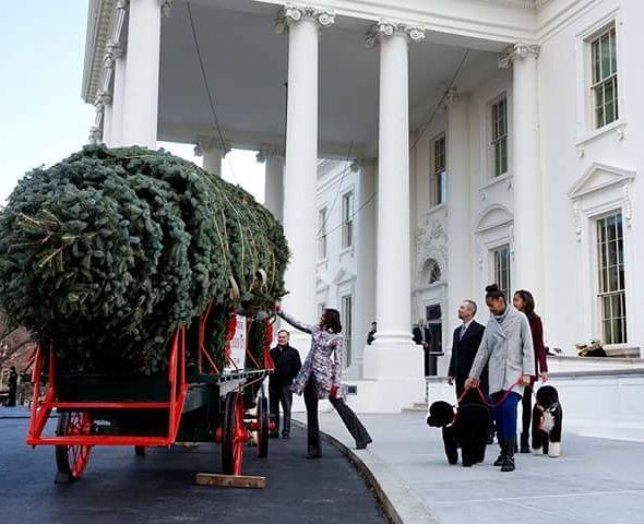 FOREVER 'OUR' FIRST FAMILY. THE OBAMAS  THANK YOU FOR SHARING YOUR LIFE AS WELL AS YOUR LOVE!  First Lady Michelle Obama with daughters Sasha and Malia and family pets Bo and Sunny receives the official White House Christmas tree at the North Portico of the White House November 28 2014