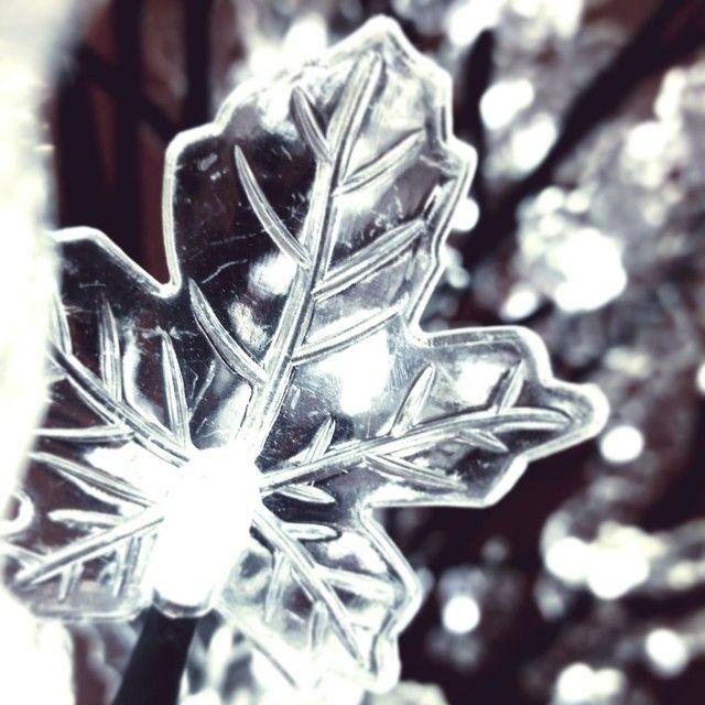 Luces de blanca Navidad