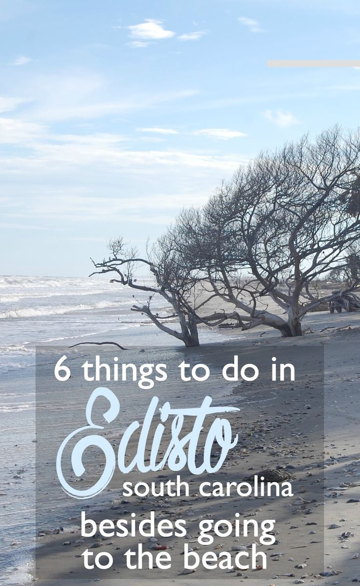 6 Things to Do in Edisto, South Carolina, Besides Going to the Beach | CosmosMariners.com
