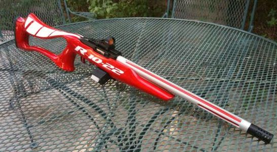 Ruger 10/22 Customization Contest Reaches Final Ten - The Truth ...