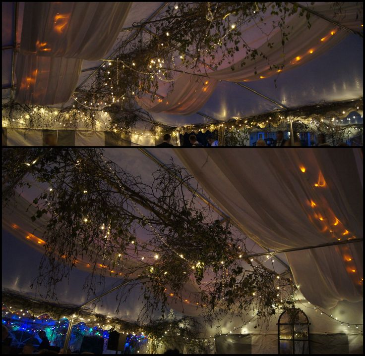 Nature theme: Our beautiful tent at night. Tent decorated with branches, light fabric, crystal garlands and plenty of light chains. Colored light over the bar / Naturtema: Vores smukke telt om aftenen. Telt pyntet med grene, let stof, krystalkæder og massere af lyskæder. farvet lys over baren.