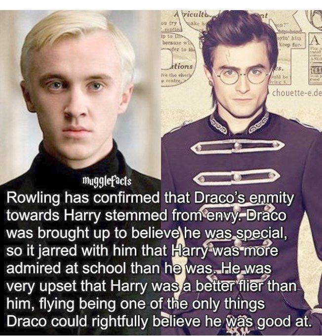 Harry Potter Memes And Gifs Harry Potter Spell Names For Pets Harry Potter Characters Killed To Create Ho Harry Potter Facts Harry Potter Feels Potter Facts