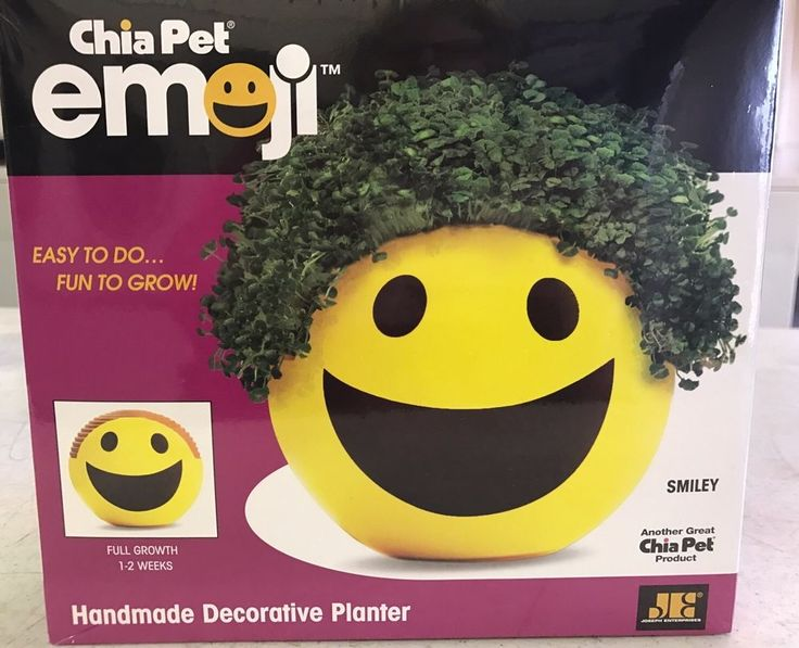 22 Best Chia Pets Images On Pinterest