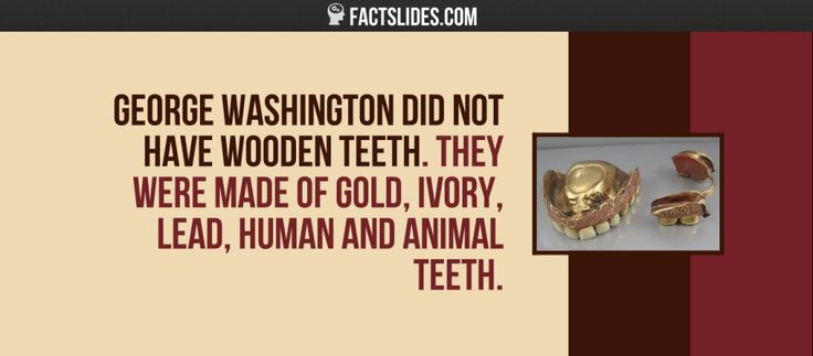 George Washington did not have wooden teeth. They were made of gold, ivory, lead, human and animal teeth.