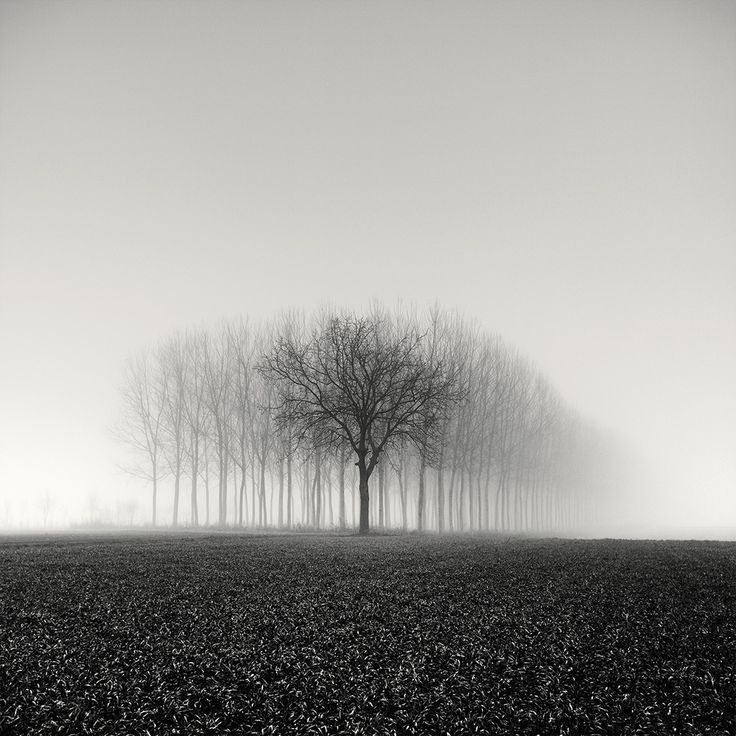 Only Among Many by Pierre Pellegrini #landscapephotography #photography