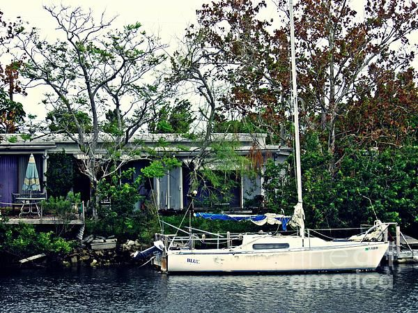 Home On A Florida Canal 1 Photograph by Sarah Loft https://fineartamerica.com/featured/home-on-a-florida-canal-1-sarah-loft.html