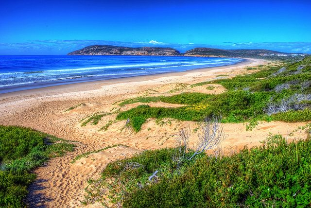 Robberg Beach, Plettenberg Bay. This place has the most beautiful hike