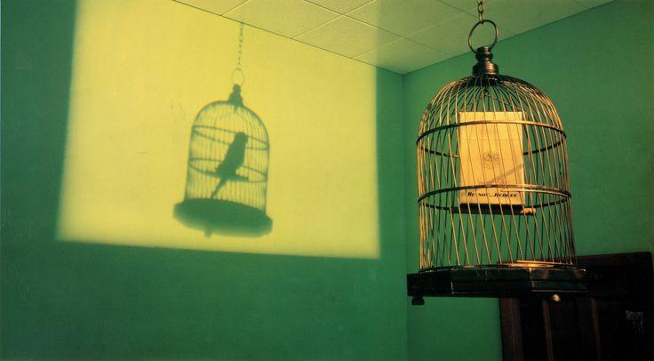 B&H Birdcage - 1978 (Photographer - Brian Duffy)