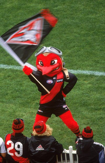 Essendon (VIC) Bombers mascot