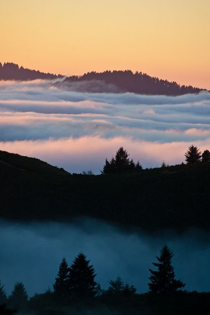 Santa Cruz Mountains by twoGiraffe, via Flickr