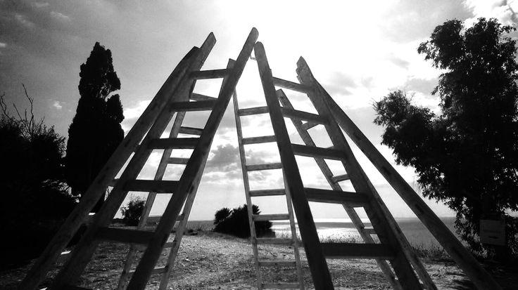 Axis Mundi di Gandolfo G. David - installazione composta da sette scale di legno alte tre metri - azienda agricola Planeta - Menfi - Sicily
