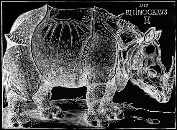 »Rhinocerus«, 1515 von Albrecht Dürer, Holzschnitt, hier invertiert –  http://de.wikipedia.org/wiki/Datei:D%C3%BCrer_rhino_full.png