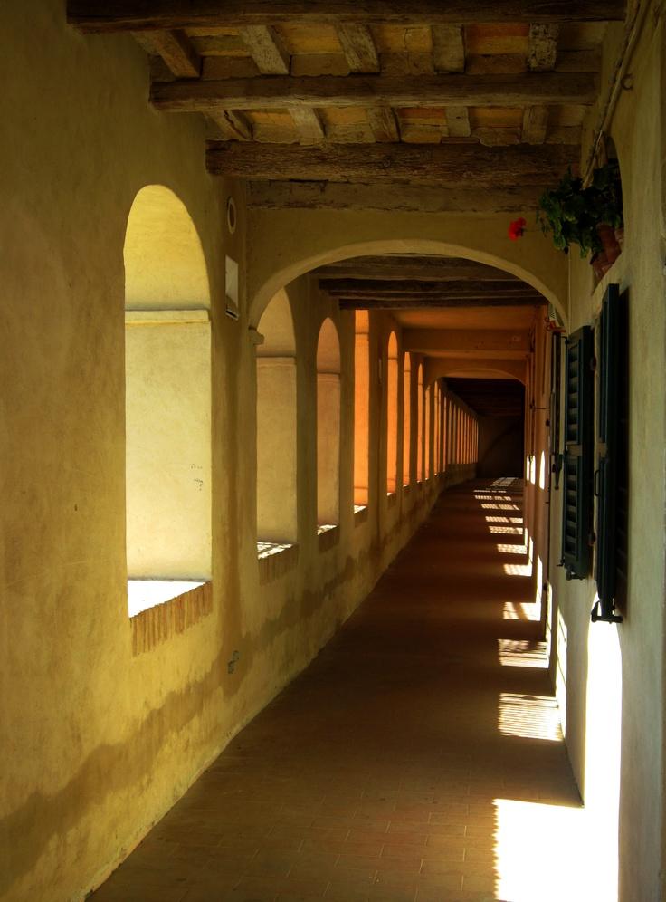 Morro d'Alba , terra del vino Lacrima http://www.guida-vino.com/it/vino-lacrima-morro-dalba.html