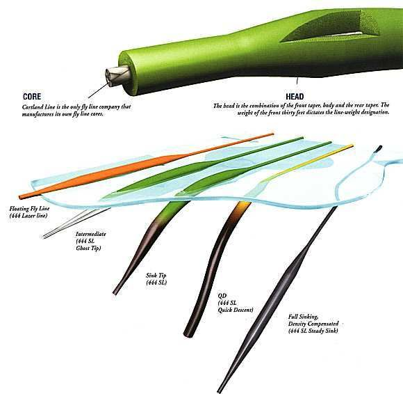 Fly Fishing Line Detail  What would fly fishing be like without fly lines? Indeed, fly lines are everything when it comes to fly fishing. U...