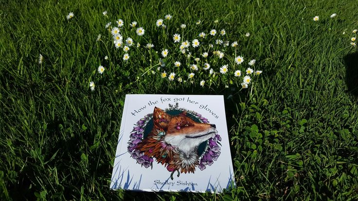 """""""Fifi knew that the daisies in the field around the cows sang their own special 'I'm feeling alive' song in their own special way."""" Find out how Fifi knows in my first story book 'How the fox got her gloves'"""