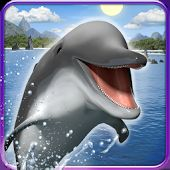 Δελφίνια και όρκες ταπετσαρία