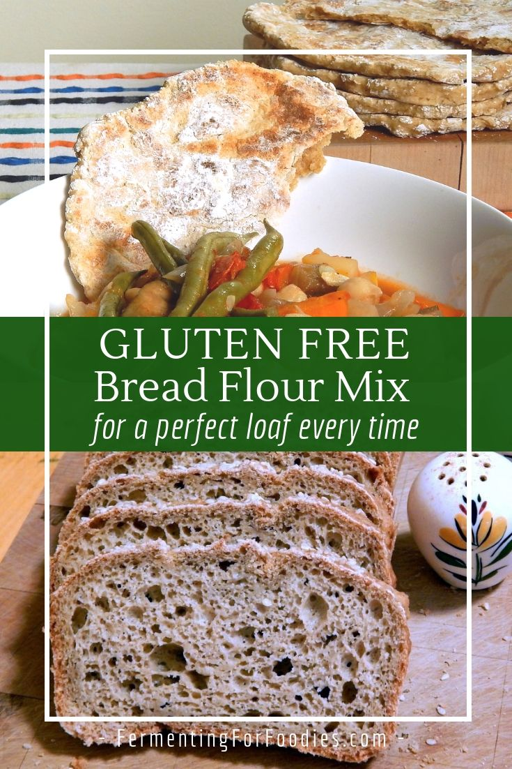 Gluten Free Bread Flour Mix Fermenting For Foodies Recipe Gluten Free Bread Flour Gluten Free Bread Gluten Free Flour Mix