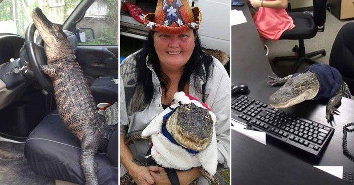 Байкерша из Америки усыновила аллигатора - http://wuzzup.ru/baykersha-iz-ameriki-usyinovila-alligatora.html