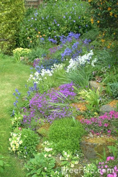 Creating A Country Style Garden Gardening Pinterest