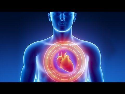herz vom mensch herz vom menschUnser wichtigster Muskel will gut gepflegt werden. Denn erkrankt das Herz drohen schwere Leiden wie etwa Herzinfarkt herz vom mensch Koronare Herzkrankheit und Herzschwäche.