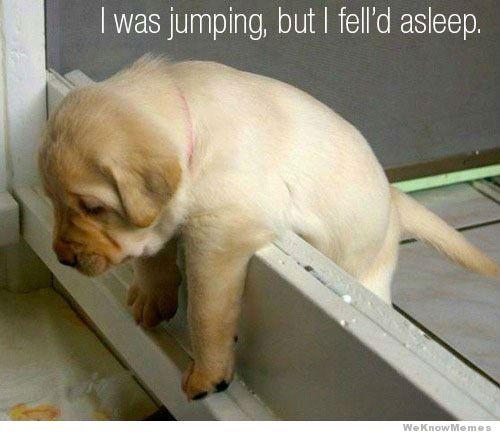 :( No puede saltar!!!
