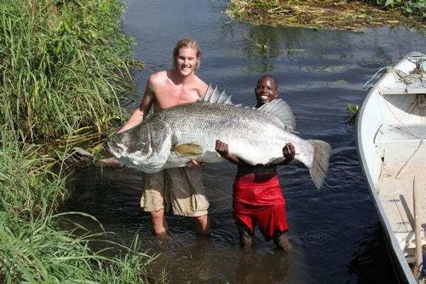 Chobe Safari Lodge, Uganda - fishing;  Pearl of Africa Tours & Travel Ltd provide guided fishing holidays on Nile River, including accommodation, fishing and activities in Murchison Falls Wildlife Game Park.   Call +256 (0) 312-260-559 Or Email: info@pearlofafricatours.com with your questions and to book your fishing adventure trip today. All packages are fully customizable.