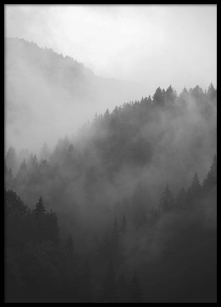 The fog and the dark treetops adds a harmonious, almost trollsk feel to your home! www.desenio.com