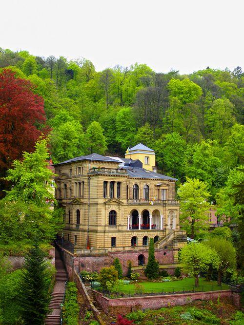 Ancient Castle, Heidelberg, Germany photo via popa