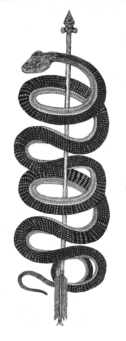 Snake + Arrow + Scale pattern + Black & white + Ink + Drawing + Loops = Funeral French