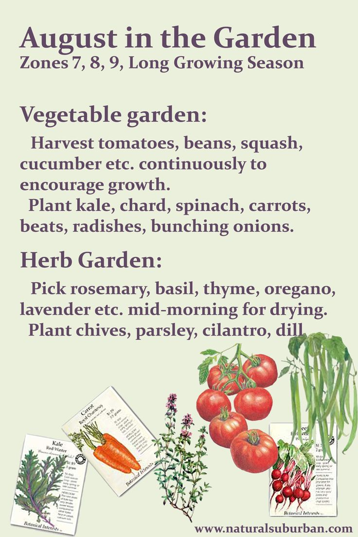 Garden to-do list for zones 7,8 and 9