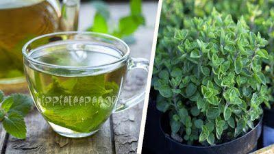 ΕΛΛΑΝΙΑ ΠΥΛΗ: Τσάι Ρίγανης: Ποιες Ασθένειες Θεραπεύει