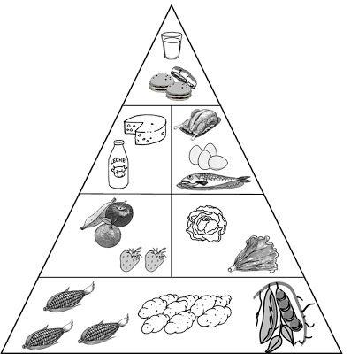 329 best images about nature on pinterest - Piramide alimenticia para colorear ...