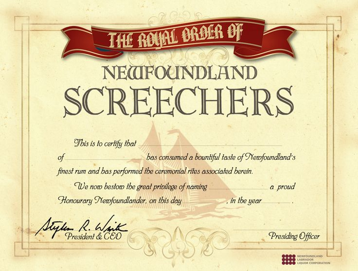 Screech In = I'm an honorary Newfoundlander.