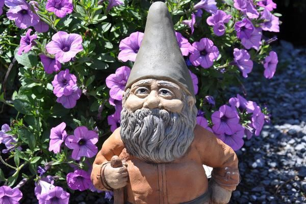 The Chelsea Flower Show includes gnomes this year (2013)