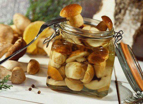 Читайте також також Салат з гарбузом, фетою та виноградом Як правильно заморозити гриби на зиму Теплий салат з кабачків та баклажанів! Сирна запіканка зі шпинатом … Read More