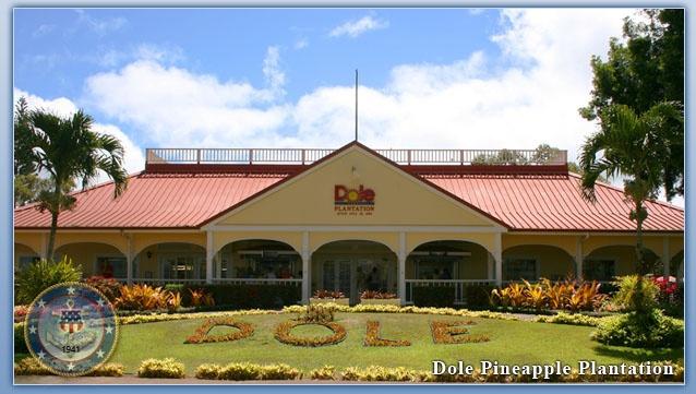 Dole Pineapple Plantation Oahu