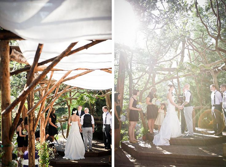 Pine Rose Mountain Wedding