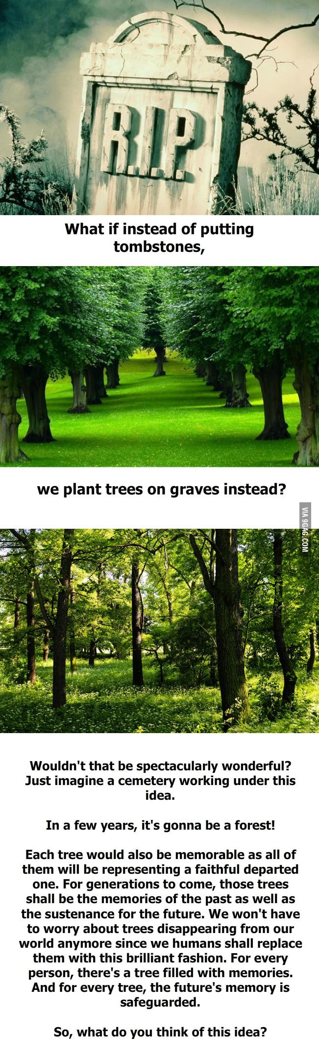 What if we plant trees on graves instead of putting tombstones?