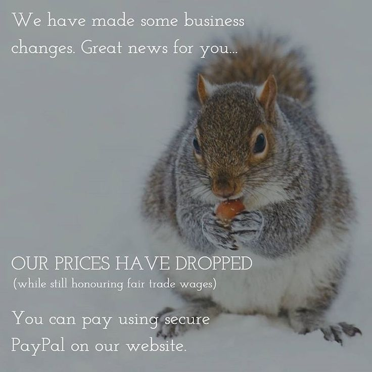 Squirreling Away On Your Behalf... We have made some business changes which means super, fair…