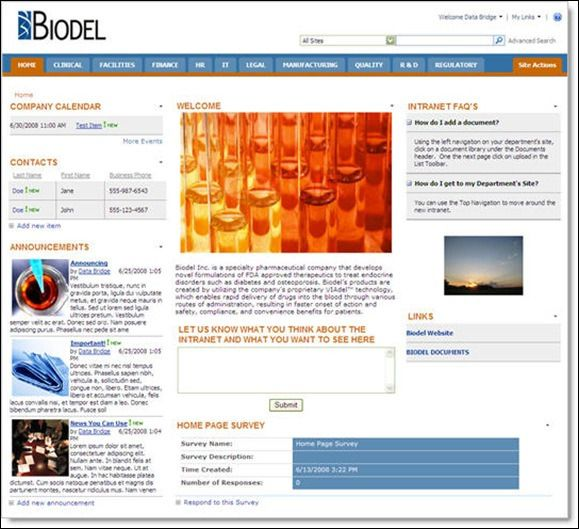 intranet website examples