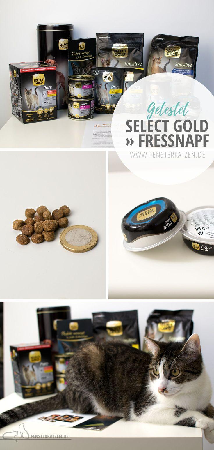 Select Gold » Fressnapf – Fensterkatzen | Katzenblog
