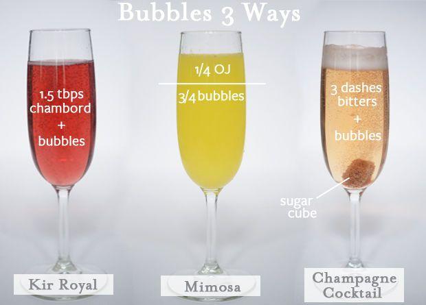 Champagne Basics - Cupcakes & Cashmere