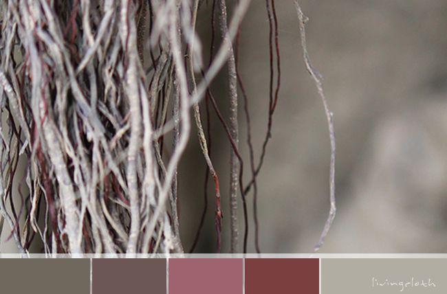 incredible curtain fig colour palette - livingcloth.com