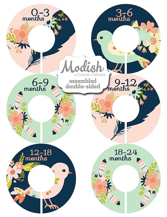 Hey, I found this really awesome Etsy listing at https://www.etsy.com/listing/265924922/closet-dividers-assembled-baby-closet