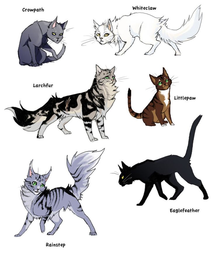 Cats. By DayLight13.deviantart.com On @DeviantArt
