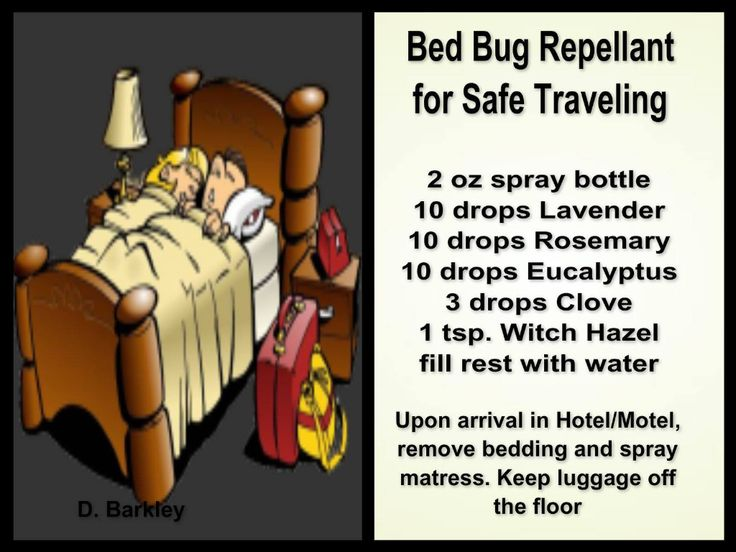 Bed bug spray More