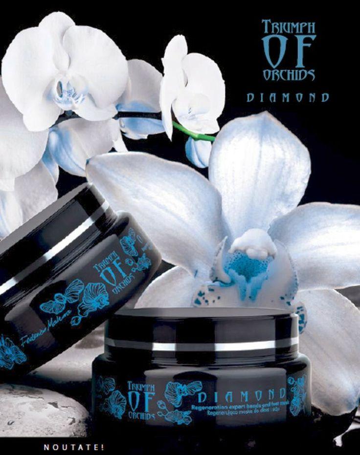 Afacerea FM Group: NOU - Colectia Triumph of Orchids DIAMOND