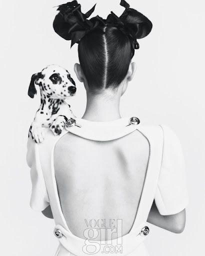 Dog & Fashion #Dalmation