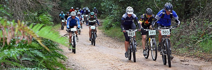 KONTOURS private tours Knysna Forest. Getting outdoors on your mountain bike is easy!  The Knysna Forest is waiting, the elephants hiding...    On an almost weekly basis mountainbiking races and -events are being organized in the greater #Knysna area.  All you need to do is go out there!